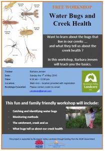 Water Bugs and Creek Health