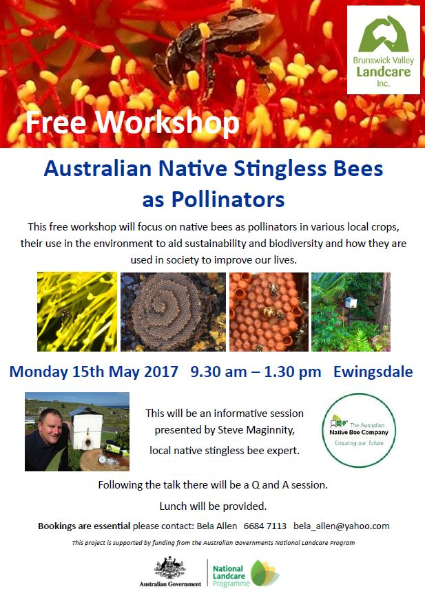 native bee workshop flyer