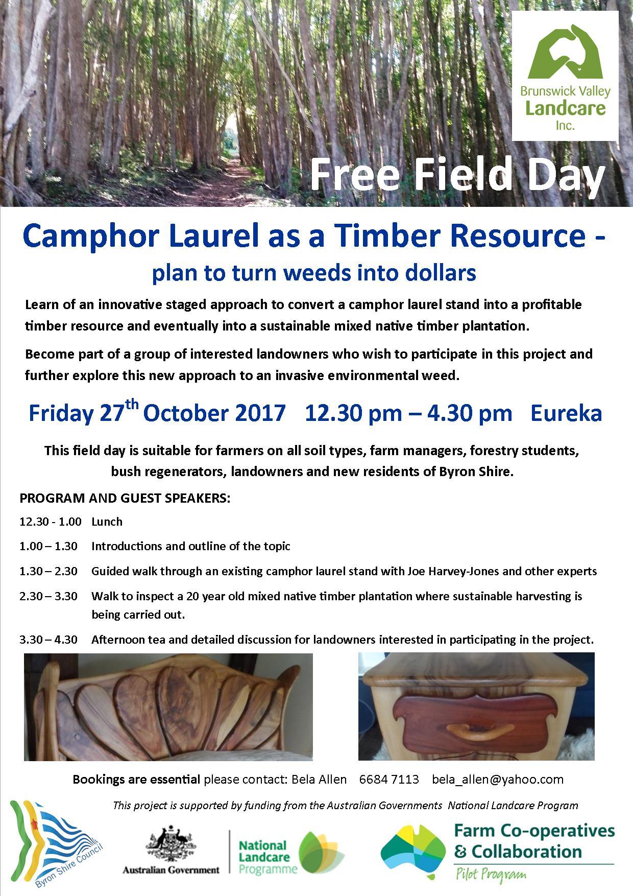 SAG camphor as a resource flyer - print