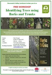 Identifying Trees using Barks and Trunks