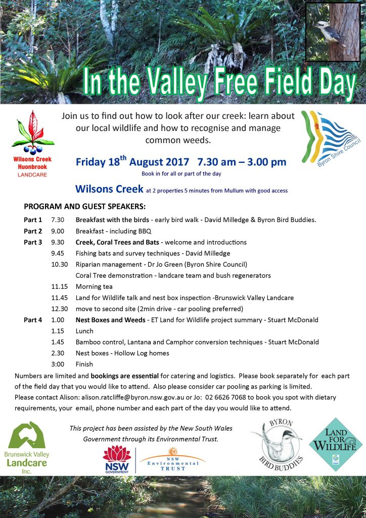 In the Valley field day - print