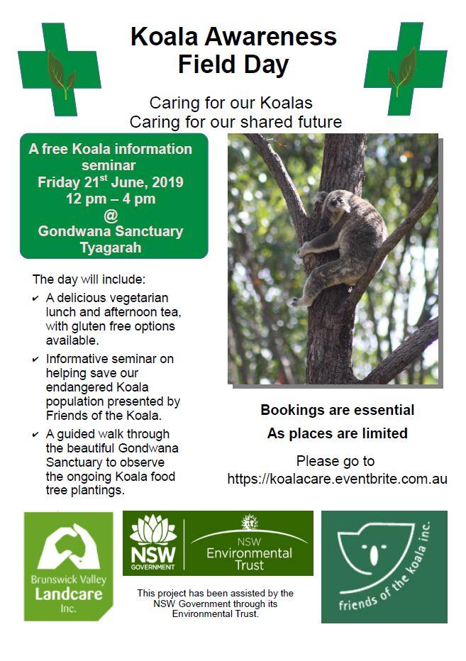 Koala Care Field Day