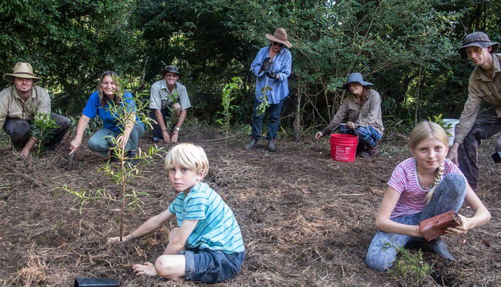 tree planting credit M Shenan